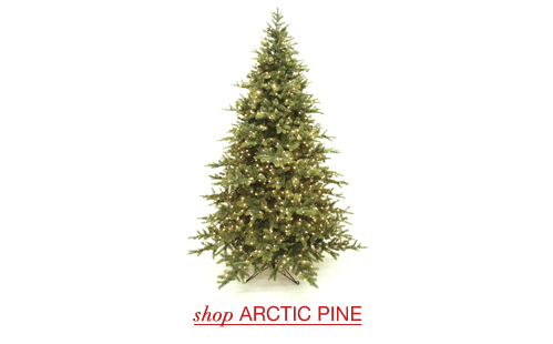 Arctic Pine