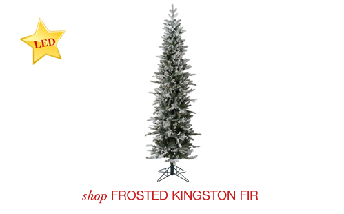 Frosted Kingston Fir