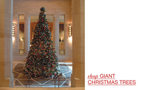 Giant Christmas Trees