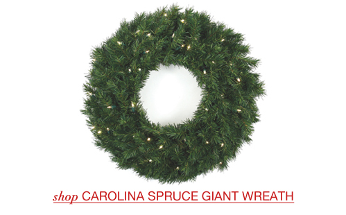 Carolina Spruce Giant Wreaths