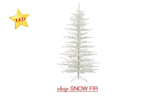 Snow Fir