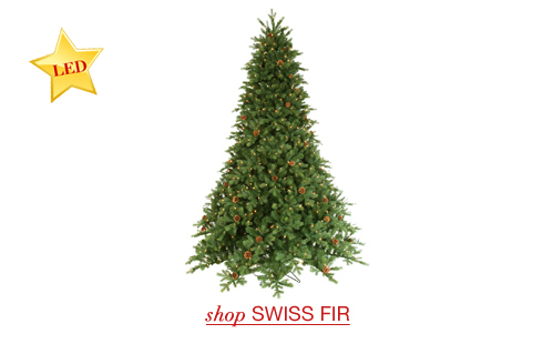 Swiss Fir