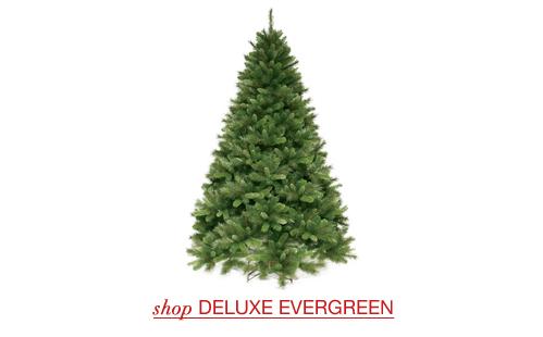 Deluxe Evergreen