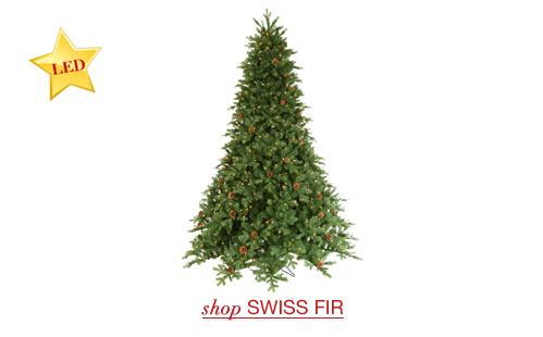 Swiss Fir