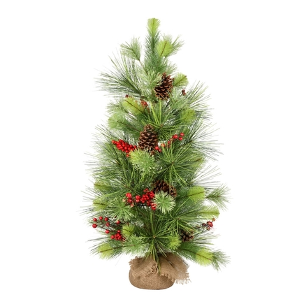 3' Monterey Pine