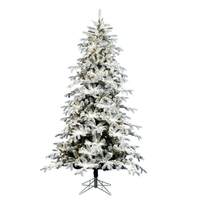 7.5' Winter Noble Fir Full Warm White LED
