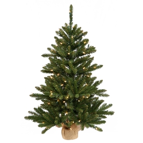"36"" Alpine Fir Warm White LED"