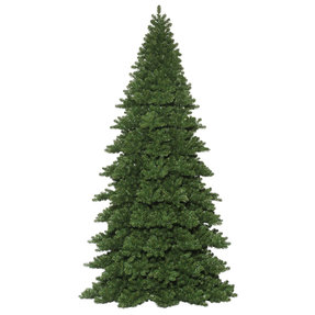 12' Giant Noble Fir Unlit
