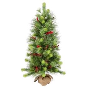 4' Monterey Pine