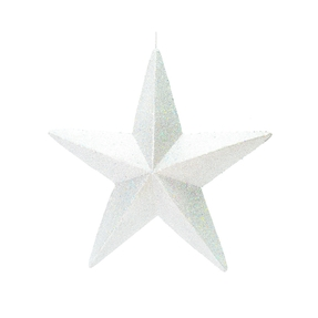 "Spirit Outdoor Glitter Star 23"" White"