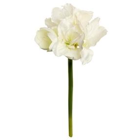 "Amaryllis Flower 26"" Set of 12 Cream"